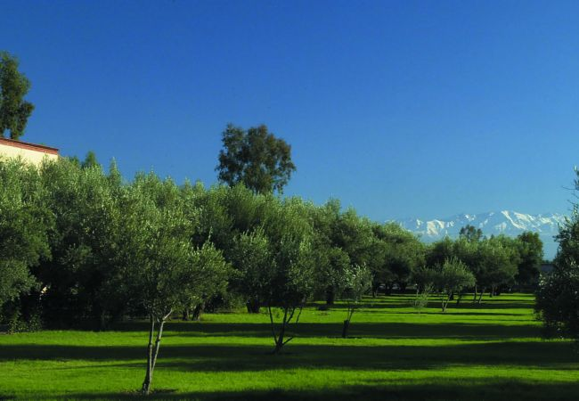 Villa à Marrakech Alentours - ABALYA 23 : Villa avec piscine privée et services.